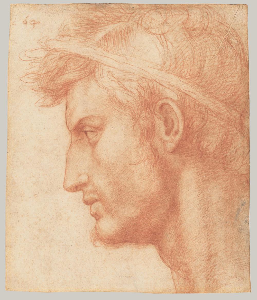 Andrea del Sarto, Study for the Head of Julius Caesar, ca. 1520