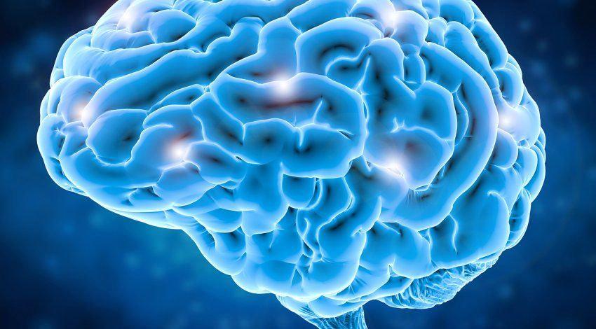 brain_lit_neurons.jpg
