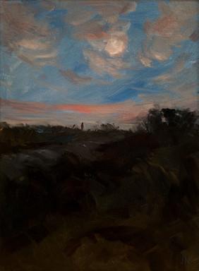 Waterloo Moon