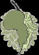 Logo---Zambia.png