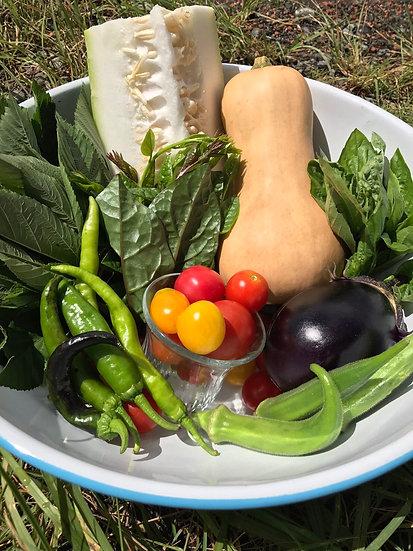 「手のひら厨人」旬の野菜 色々セット