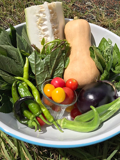 手のひら厨人 旬のお野菜セット