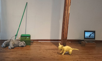 おひねりプロジェクトの報告 堀田千尋展『Clean the house by using dogs 』
