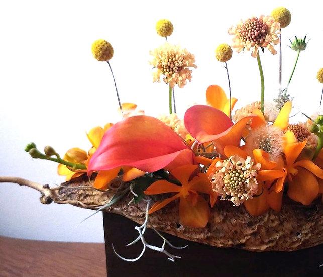 母の日のお花 なた豆 オレンジ系 or 紫系