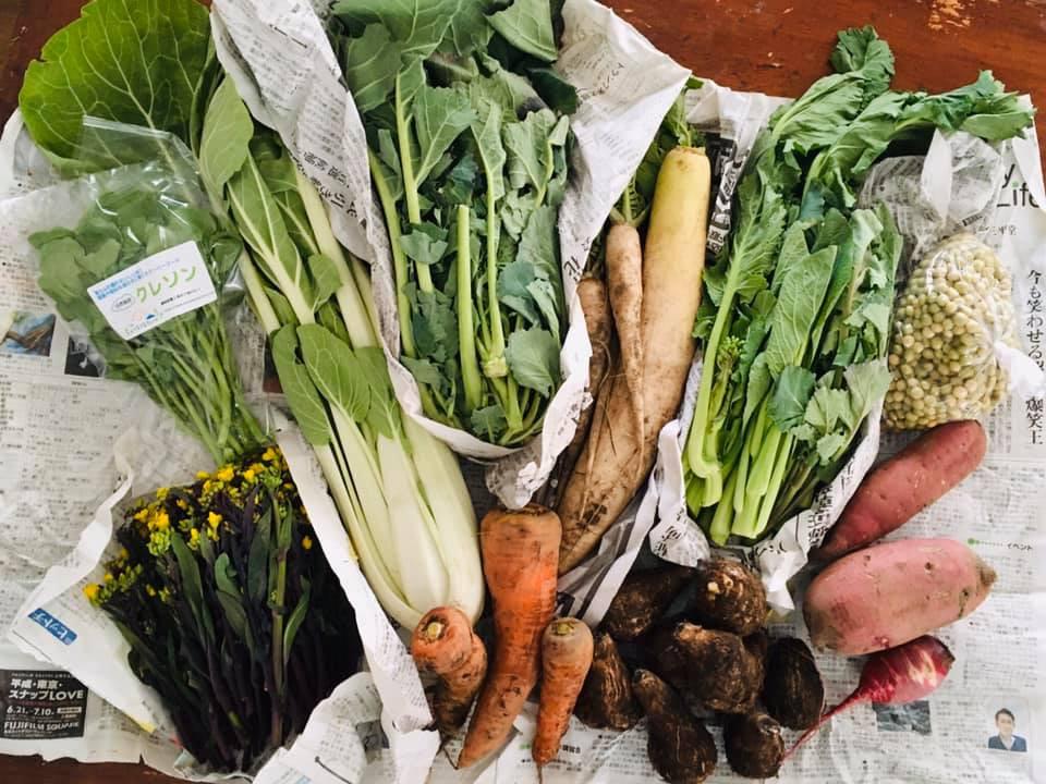 手のひら厨人のお野菜