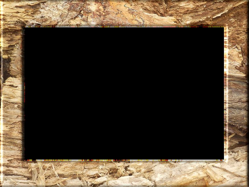 frame-1973498_960_720.png
