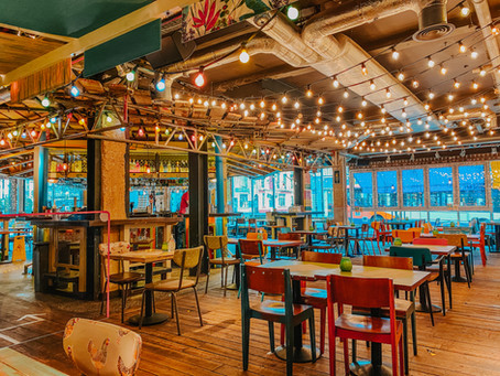 Bottomless Brunch at Turtle Bay