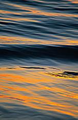 Wave, Laguna Beach California