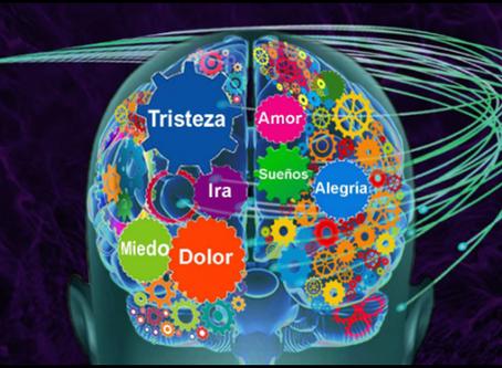 Psiconeuroendocrinoinmunología.