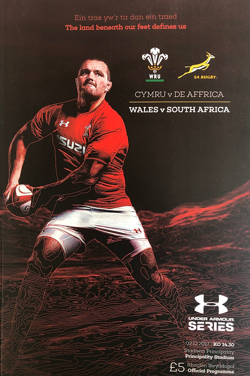 Wales v South Africa 02.12.2017
