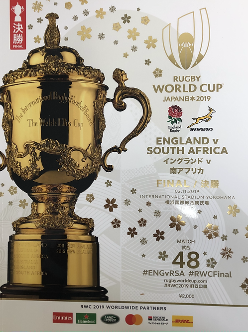 Rugby World Cup 2019 - England v South Africa