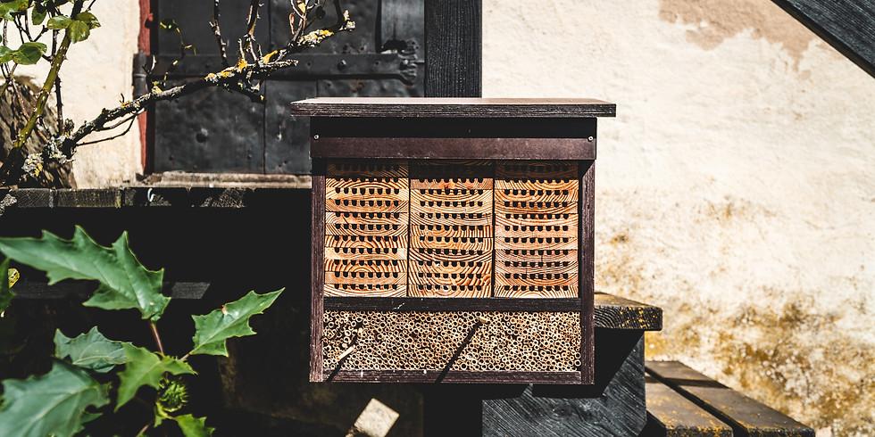 Well-Beeing – Eine Exkursion in den Kosmos der Bienen x Corona Culture