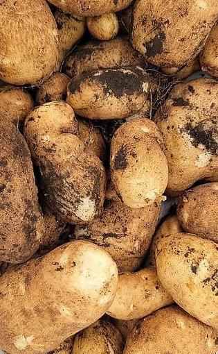 Baby Potatoes 1 lbs.