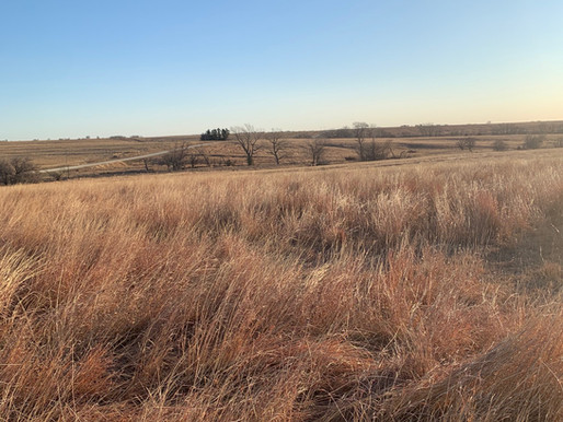 SOLD!  Jewell County, KS pasture land (S35, T01, R07W, ACRES 313.95, N1/2 LESS ROW)