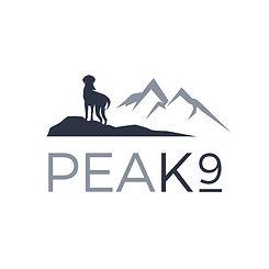 Peak9 logo v2 square.jpg