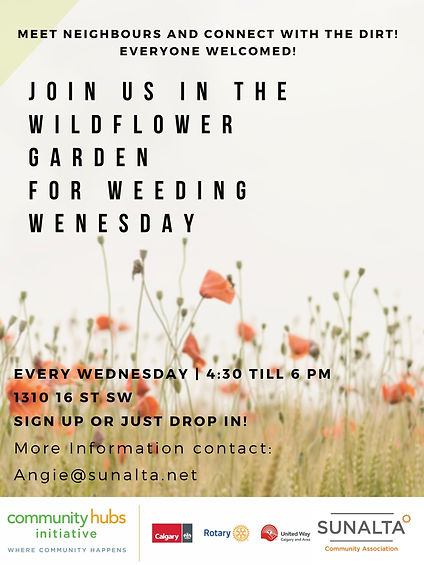 Weeding Wednesday - Wildflower Garden -