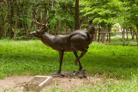High Tailin' - Donated by Charles W. & Rebah J. Hubbard