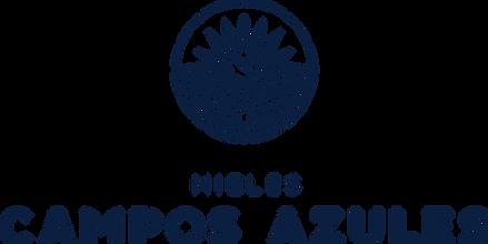 logo mca_ (002).png