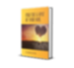 book cover 3 d.png
