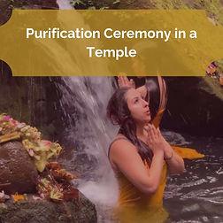purification icon.jpg