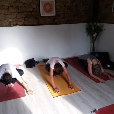 Reprise des cours de Yoga en Septembre 2021!