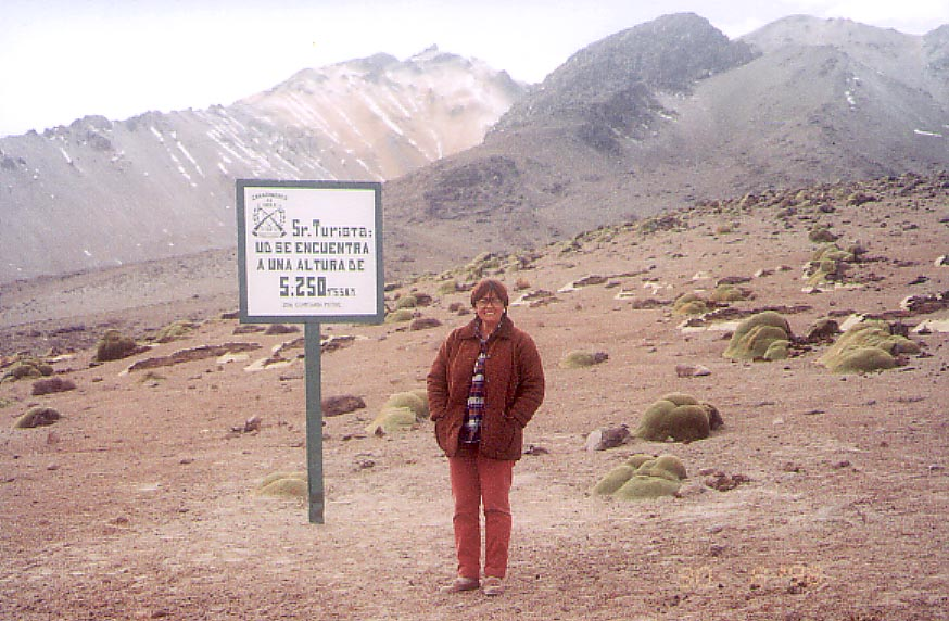 Maria Herlinda 1993