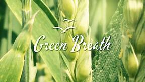 GreenBreath