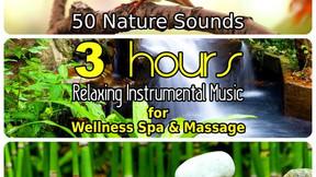 50 Nature Sounds - music album