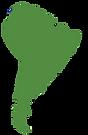 Café origine Amérique du Sud - Les Cafes Lucor