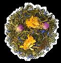 Mélange de thés verts Alveus
