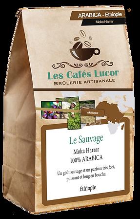 Café arabica Ethiopie - Le Sauvage