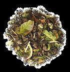Mélange de thé vert et banc Jasmin