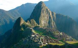 Machu Picchu - Production du café
