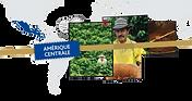 Café origine Amérique du Sud - Torréfié par Les Cafés Lucor
