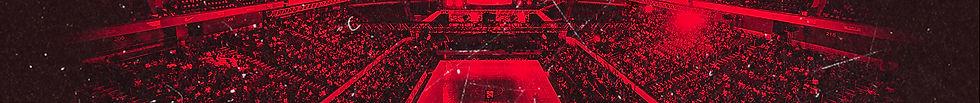 Banner_01_rosso.jpg