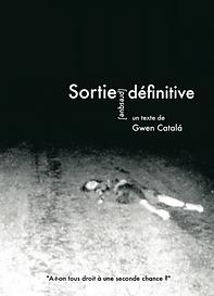 Sortie_Presque_Définitive.png