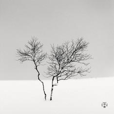 Japon - Hokkaido II