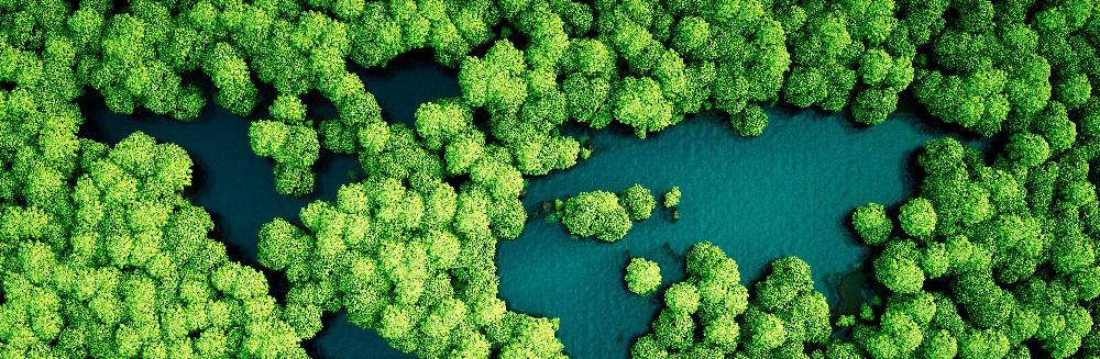 Olivier Robert Photo s'engage pour le respect de l'environnement