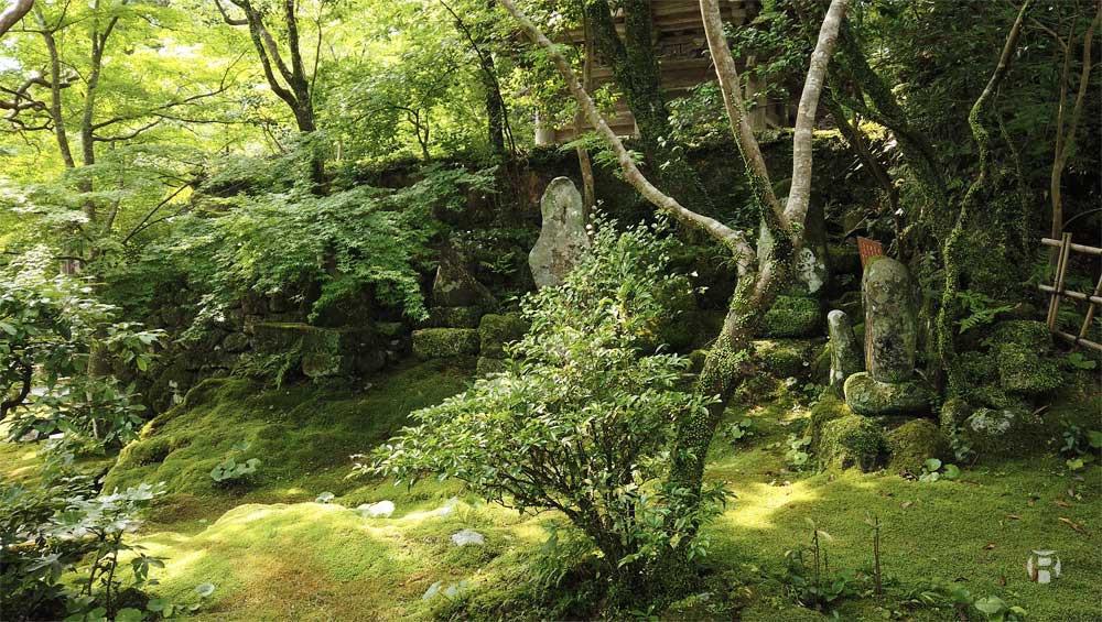 Japon: photographier le Temple Chikurinji à Kochi