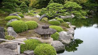 Japon: photographier le Jardin Yushi-en à Matsue