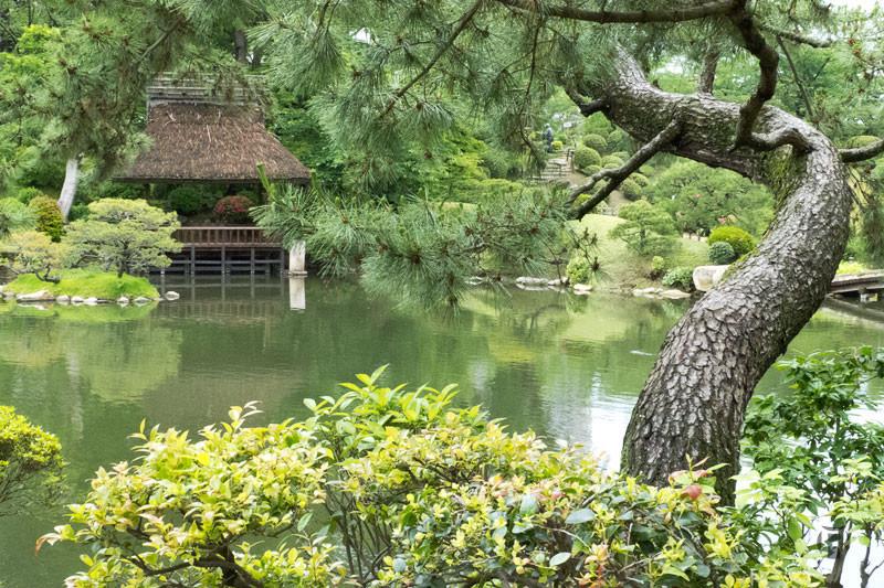 Japon: photographier le Jardin Shukkei-en à Hiroshima
