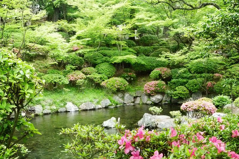 Japon: photographier le Jardin Momijidani Teien à Wakayama