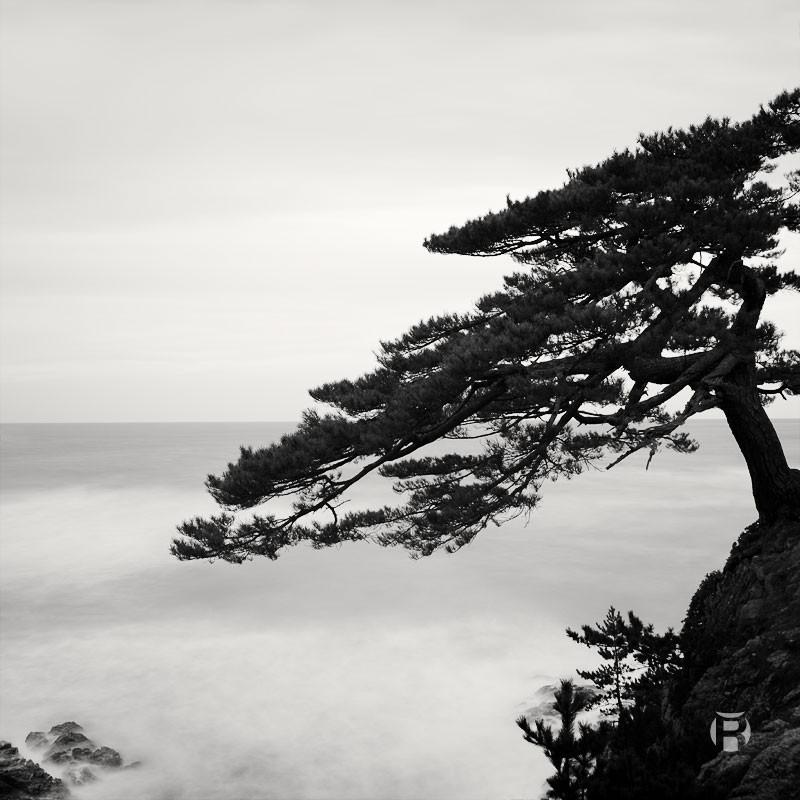 Japon: photographier la Côte Uradome à Tottori