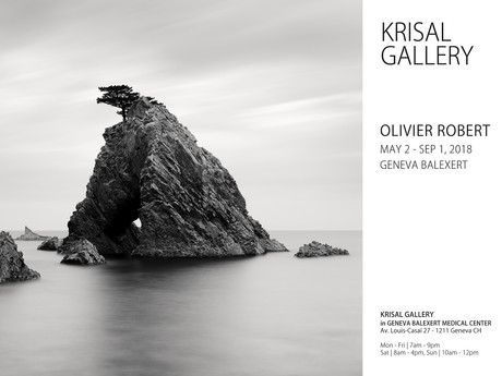Japan - Krisal Gallery in Balexert Mall, Geneva, Switzerland 2018