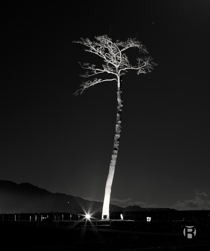 Japon: le Grand Tsunami de 2011, 10 ans déjà
