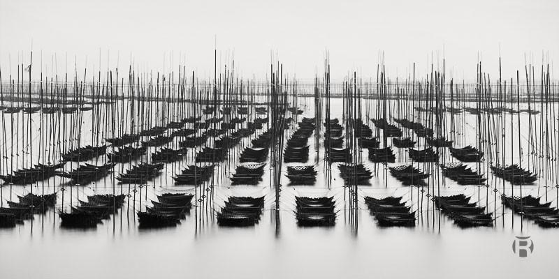 Japon: photographier les fermes d'algues de la mer d'Ariake