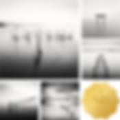 Gold_Series_630.jpg