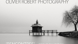 Rencontres - Galerie 361, Annecy, France, 2014