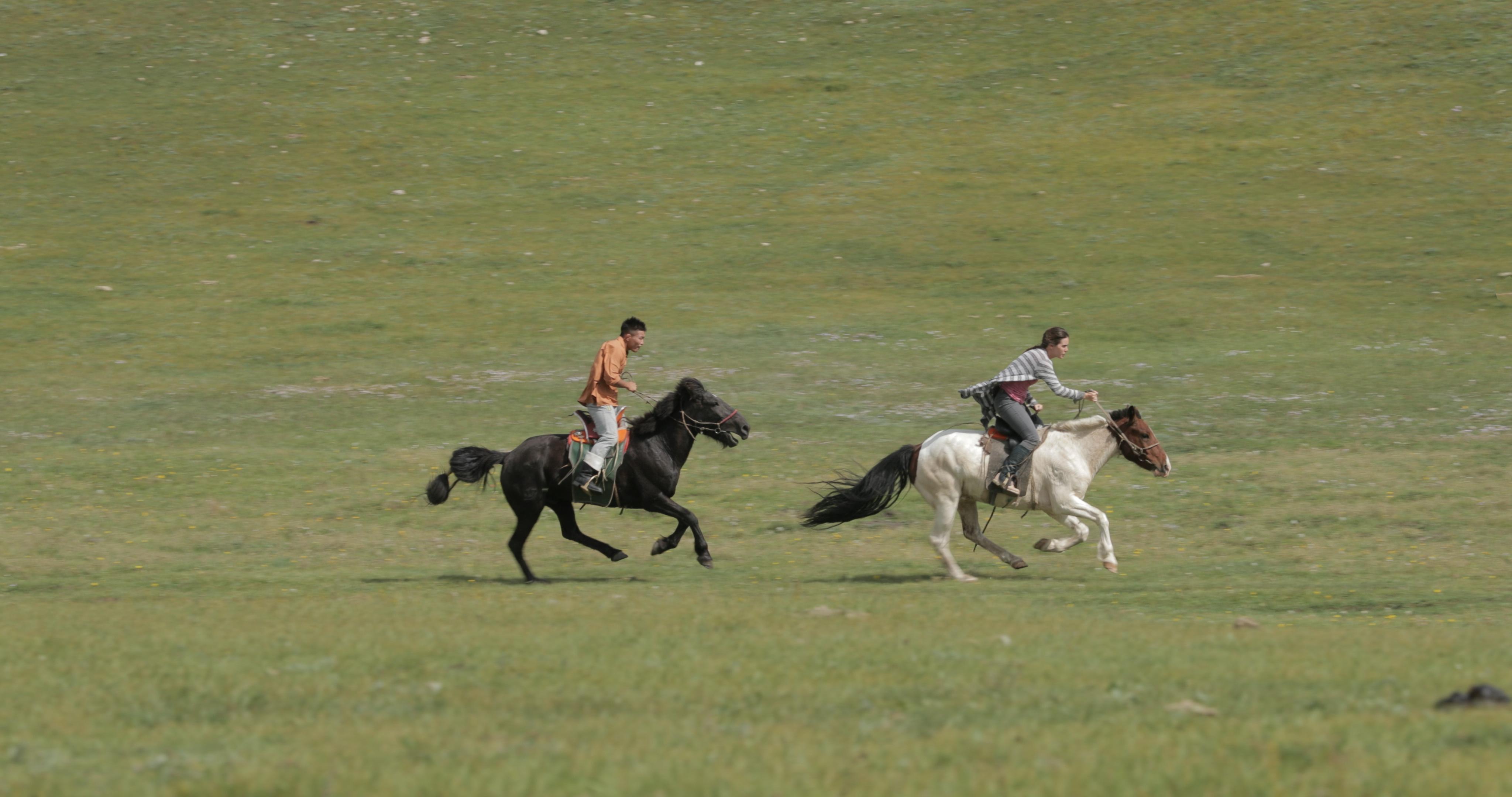 180827_MG-HORSES_1DX-NEUTRAL_008 (21;17;