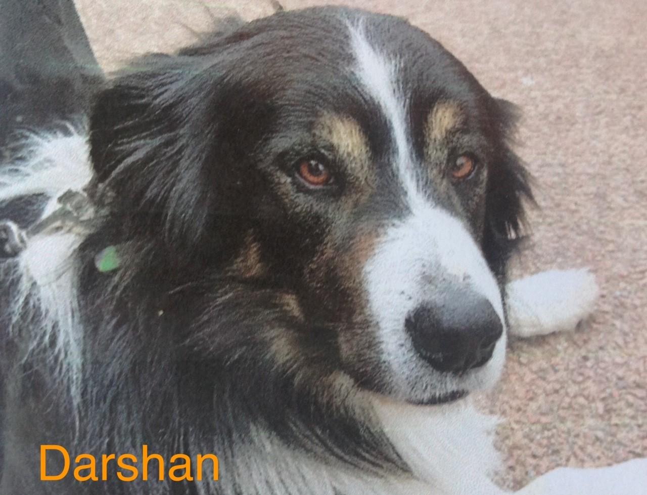 thumbnail_Darshan